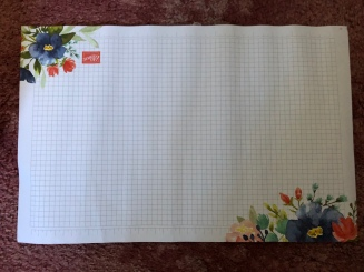 Beautiful grid paper, two sided.....wish we could buy this, its so much nicer than the plain white!